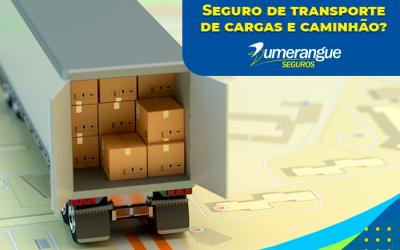Seguro de Transportes de Cargas e Caminhão: Por que Devo Contratar?