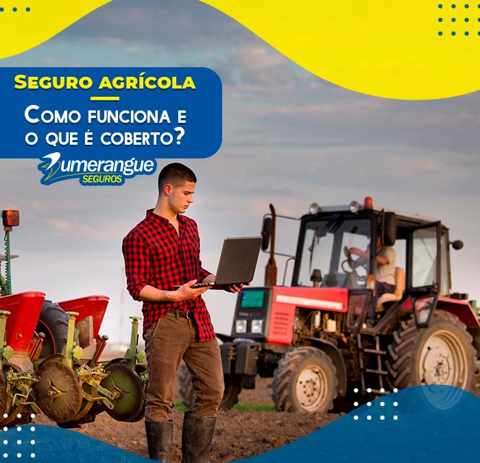 Seguro agrícola e propriedade rural: o que é coberto e como funciona?